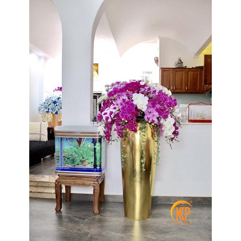nới bán hoa lan hồ điệp trồng sẵn trong chậu